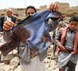 عکس خبري -دلارهاي نفتي و حقوق بشر