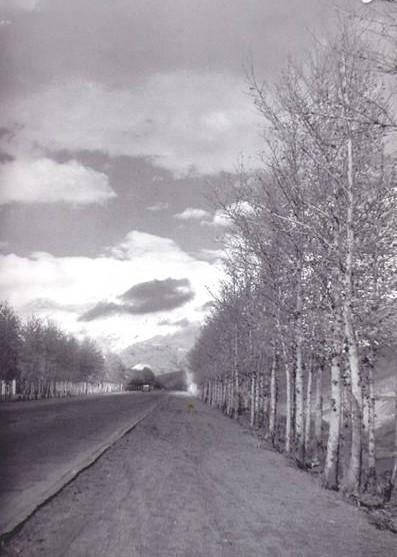 عکس خبري - خيابان وليعصر، 63 سال قبل!