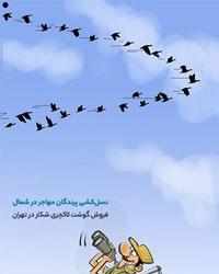 عکس خبري - غذايلاکچري با گوشت پرندگان مهاجر!