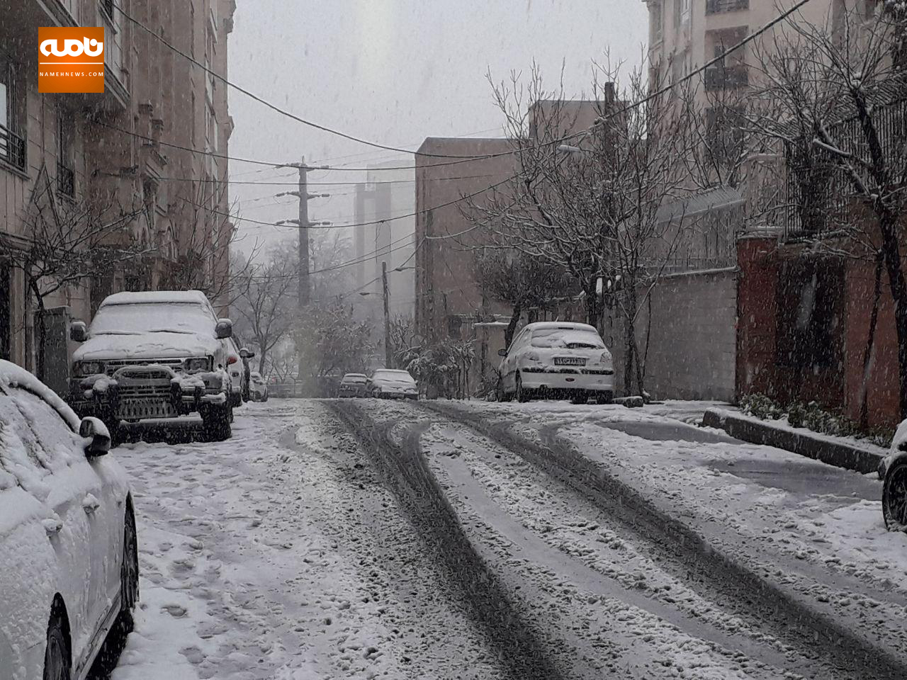عکس خبري -عکس / بارش برف در تهران - هم اکنون