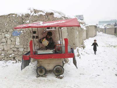 عکس خبري -سرما چند کشته داد؟