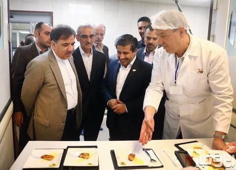 عکس خبري -سود  پختوپز غذاي ايراني در جيب اتريشيها