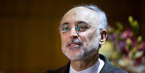 عکس خبري -صالحي: نام سردار سليماني با قدس عجين شد