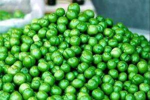 عکس خبري -چه کساني نبايد گوجه سبز بخورند؟