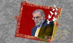 عکس خبري -واکنش جامعه علمي و دانشگاهي به ترور دانشمند ايراني