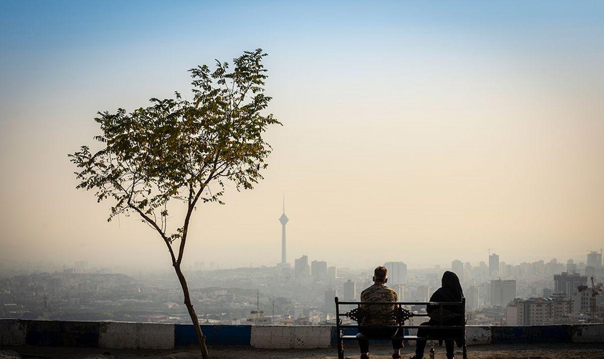 عکس خبري -رد احتمال سوزاندن مازوت با وجود ردپاهاي بزرگ/ شوراي شهر: در صورت اثبات شکايت ميکنيم