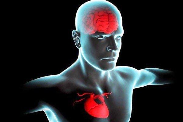 عکس خبري - ارتباط سلامت قلب در ميانسالي با کاهش ريسک زوال عقل