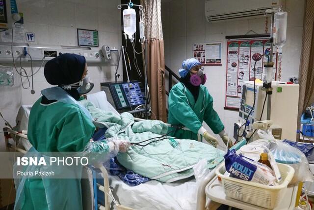 عکس خبري -پويش «سپاس رهبرم» با امضاي بيش از ?? هزار پرستار