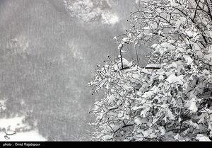 عکس خبري -بارش برف، باران و وزش باد شديد از پنجشنبه